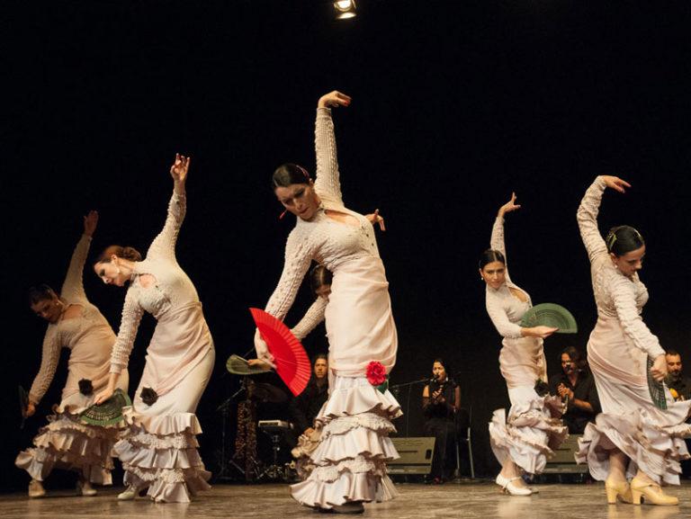 Flamenco Lunares