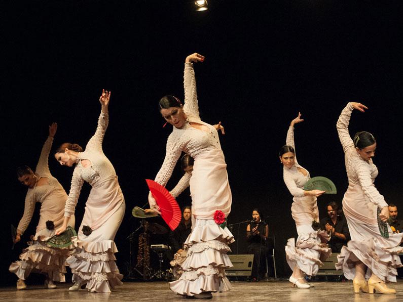 flamenco_sito_03